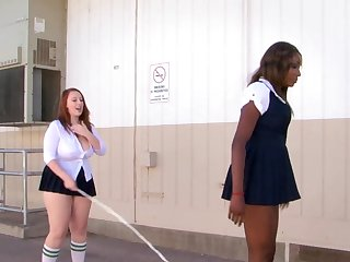 Interracial poof sex between stars Felicia Clover and Shae Spreadz